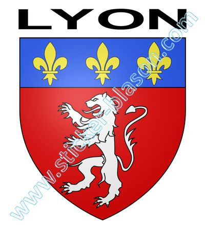 blason lyon autocollant pour plaque d 39 immatriculation automobile. Black Bedroom Furniture Sets. Home Design Ideas